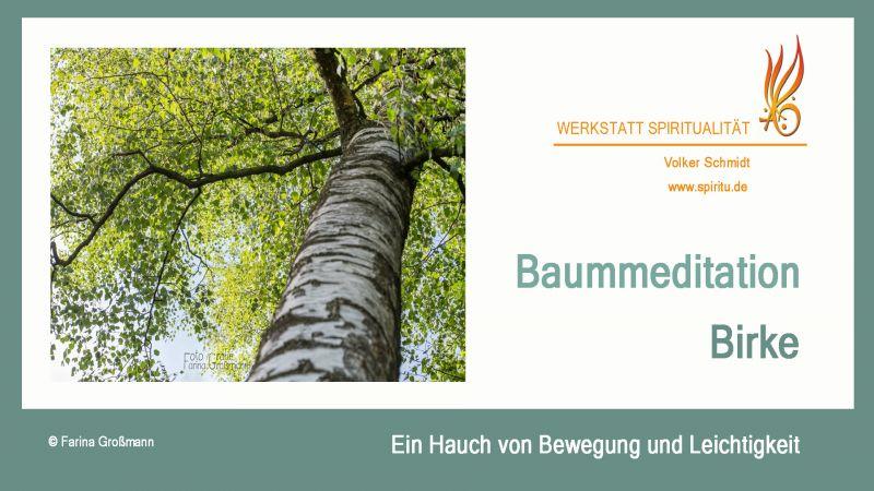 tl_files/images/Baummeditation Birke Titel Chart.jpg